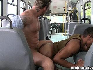 baitbus porn videos